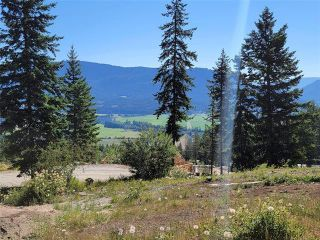 Photo 44: 238 Twin Lakes Road, in Enderby: House for sale : MLS®# 10233771