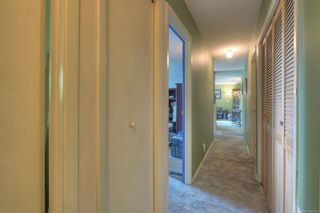 Photo 19: 6628 Rey Rd in : CS Tanner House for sale (Central Saanich)  : MLS®# 851705
