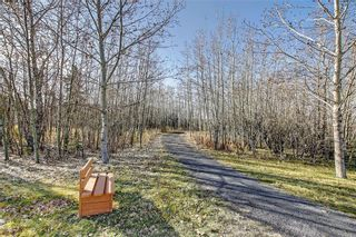 Photo 48: 641 ADVENT Bay in Rural Rocky View County: Rural Rocky View MD Semi Detached for sale : MLS®# C4301047