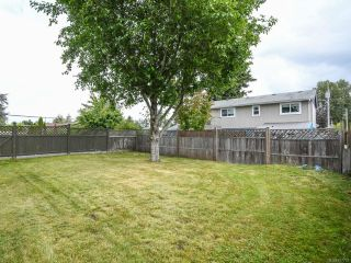 Photo 28: 558 23rd St in COURTENAY: CV Courtenay City House for sale (Comox Valley)  : MLS®# 797770