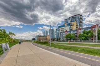 Photo 25: 208 325 3 Street SE in Calgary: Downtown East Village Apartment for sale : MLS®# A1116069