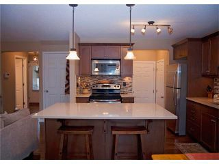 Photo 18: 509 WINDRIDGE Road SW: Airdrie House for sale : MLS®# C4050302
