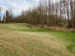 Photo 5: 49101 Range Road 233: Rural Leduc County Rural Land/Vacant Lot for sale : MLS®# E4219459