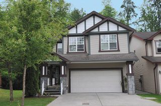 Photo 1: 24330 100B Avenue in Maple Ridge: Albion House for sale : MLS®# R2073039
