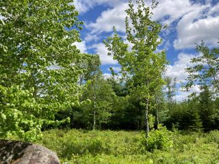Photo 17: Lot 29 Anderson Drive in Sherbrooke: 303-Guysborough County Vacant Land for sale (Highland Region)  : MLS®# 202115631
