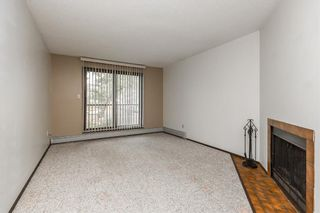 Photo 7: 206 3910 23 Avenue S: Lethbridge Apartment for sale : MLS®# A1142174