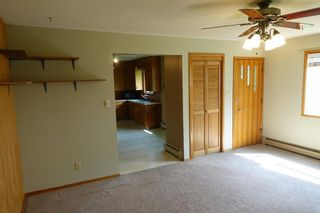 Photo 11: 30035 RGE Rd 14: Rural Mountain View County Detached for sale : MLS®# A1021725