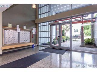 Photo 4: 102 797 Tyee Rd in VICTORIA: VW Victoria West Condo for sale (Victoria West)  : MLS®# 759159