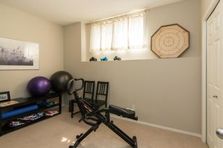 Photo 21: 172 COPPERFIELD Rise SE in Calgary: Copperfield Detached for sale : MLS®# C4201134
