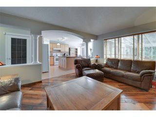 Photo 17: 83 MT SELKIRK Close SE in Calgary: McKenzie Lake House for sale : MLS®# C4066159