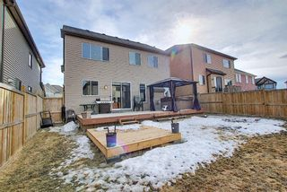 Photo 49: 117 Windgate Close: Airdrie Detached for sale : MLS®# A1084566