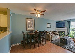 Photo 5: 2 Bedroom Apartment for Sale in Maple Ridge