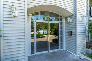 """Photo 3: 215 5677 208 Street in Langley: Langley City Condo for sale in """"Ivylea"""" : MLS®# R2595090"""