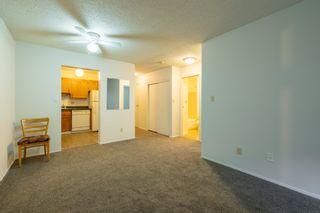 Photo 19: 104 4015 26 Avenue in Edmonton: Zone 29 Condo for sale : MLS®# E4259021