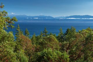Photo 43: 396 Ocean Spring Terr in : Sk Becher Bay House for sale (Sooke)  : MLS®# 863006
