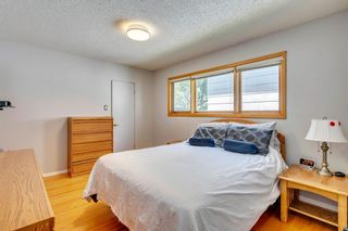 Photo 20: 712 MAPLETON Drive SE in Calgary: Maple Ridge Detached for sale : MLS®# A1018735