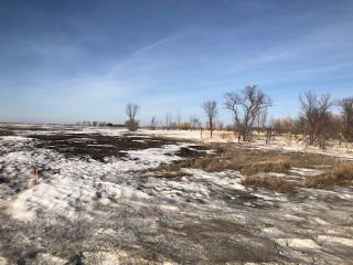 Photo 13: 0 53N Road: RM Tache Vacant Land for sale (R05)  : MLS®# 202109286