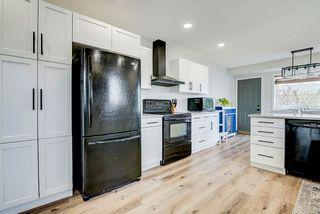 Photo 19: 22 WESTMEWS Drive: Fort Saskatchewan House for sale : MLS®# E4245512