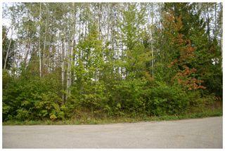 Photo 19: Lot 1 Eagle Bay Road in Eagle Bay: Eagle Bay Estates Vacant Land for sale : MLS®# 10105919