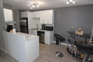 Photo 10: 101 9909 104 Street in Edmonton: Zone 12 Condo for sale : MLS®# E4256671