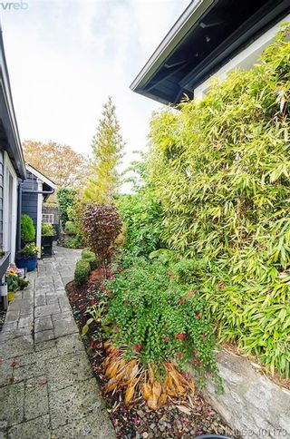 Photo 34: 922 Lawndale Ave in VICTORIA: Vi Fairfield East House for sale (Victoria)  : MLS®# 800501