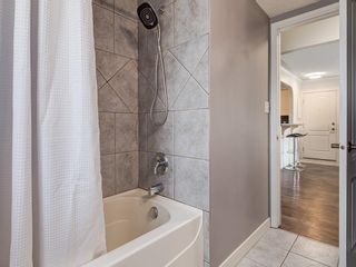 Photo 14: 401 343 4 Avenue NE in Calgary: Crescent Heights Apartment for sale : MLS®# C4204506
