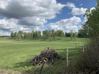 Photo 4: 53000 Range Road 73: Rural Parkland County Rural Land/Vacant Lot for sale : MLS®# E4202767