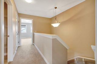 Photo 19: 263 Cornerstone Avenue NE in Calgary: Cornerstone Semi Detached for sale : MLS®# A1069898
