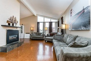 Photo 13: 22 BALMORAL Drive: St. Albert House for sale : MLS®# E4239500