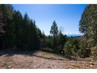 Photo 4: 4638 WOODGREEN Drive in West Vancouver: Cypress Park Estates Home for sale ()  : MLS®# V1056175