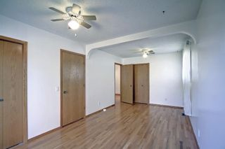 Photo 25: 317 Big Springs Court SE: Airdrie Detached for sale : MLS®# A1152002