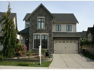 Photo 1: 2520 162 Street in South Surrey: Home for sale : MLS®# F1407632
