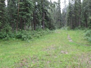 Photo 42: 70041 Highway 591: Rural Clearwater County Detached for sale : MLS®# C4305359