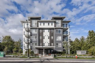 "Photo 16: 501 22315 122 Avenue in Maple Ridge: East Central Condo for sale in ""The Emerson"" : MLS®# R2409672"