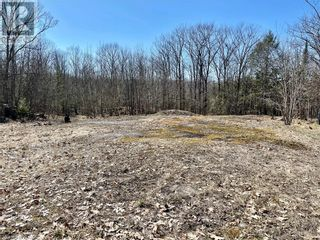 Photo 11: 0 COUNTY ROAD 36 in Bobcaygeon: Vacant Land for sale : MLS®# 40095128