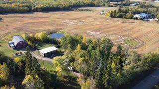 Photo 10: 51360 RGE RD 223: Rural Strathcona County House for sale : MLS®# E4266301