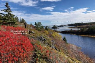 Photo 29: 1383 Blue Rocks Road in Blue Rocks: 405-Lunenburg County Residential for sale (South Shore)  : MLS®# 202102958