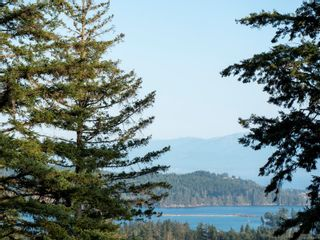 Photo 34: Proposed Lot 1 Clarkson Pl in : Sk Broomhill Land for sale (Sooke)  : MLS®# 850311