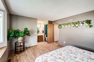 Photo 18: 51 Millrise Way SW in Calgary: Millrise Detached for sale : MLS®# A1126137