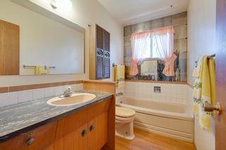 Photo 28: 7228 131A Avenue in Edmonton: Zone 02 House for sale : MLS®# E4252234