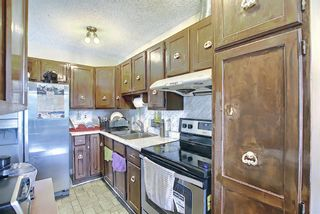 Photo 11: 217 Templemont Drive NE in Calgary: Temple Semi Detached for sale : MLS®# A1120693