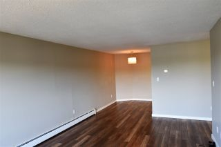 Photo 5: 215 2551 WILLOW Lane in Abbotsford: Central Abbotsford Condo for sale : MLS®# R2188164