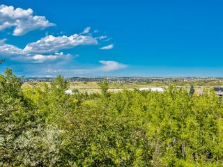 Photo 42: 229 Valley Ridge Green NW in Calgary: Valley Ridge Detached for sale : MLS®# A1065673