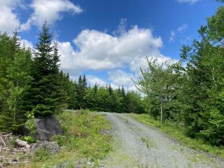 Photo 10: Lot 29 Anderson Drive in Sherbrooke: 303-Guysborough County Vacant Land for sale (Highland Region)  : MLS®# 202115631