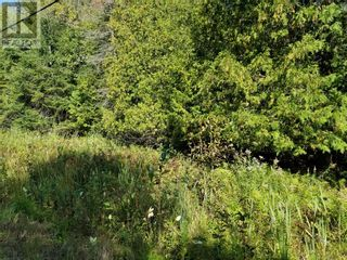 Photo 8: PT 1 Silver Lake Road in Silver Water, Manitoulin Island: Vacant Land for sale : MLS®# 2098407