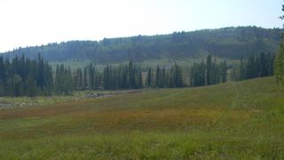 Photo 21: Corner of 178 Ave & 336 St W: Rural Foothills County Land for sale : MLS®# A1053038