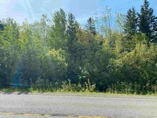 Photo 4: Lot 2 Egypt Road in Little Harbour: 108-Rural Pictou County Vacant Land for sale (Northern Region)  : MLS®# 202117045