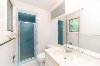 Photo 9:  in Edmonton: Zone 22 House for sale : MLS®# E4248753