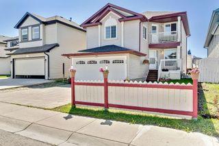 Photo 31: 279 TARACOVE ESTATE Drive NE in Calgary: Taradale Detached for sale : MLS®# C4297853
