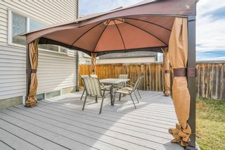 Photo 26: 484 Prestwick Circle SE in Calgary: McKenzie Towne Detached for sale : MLS®# A1101425